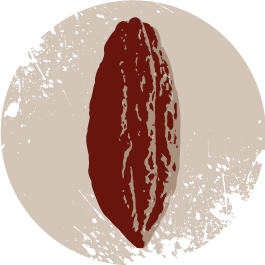 cacao arrayan